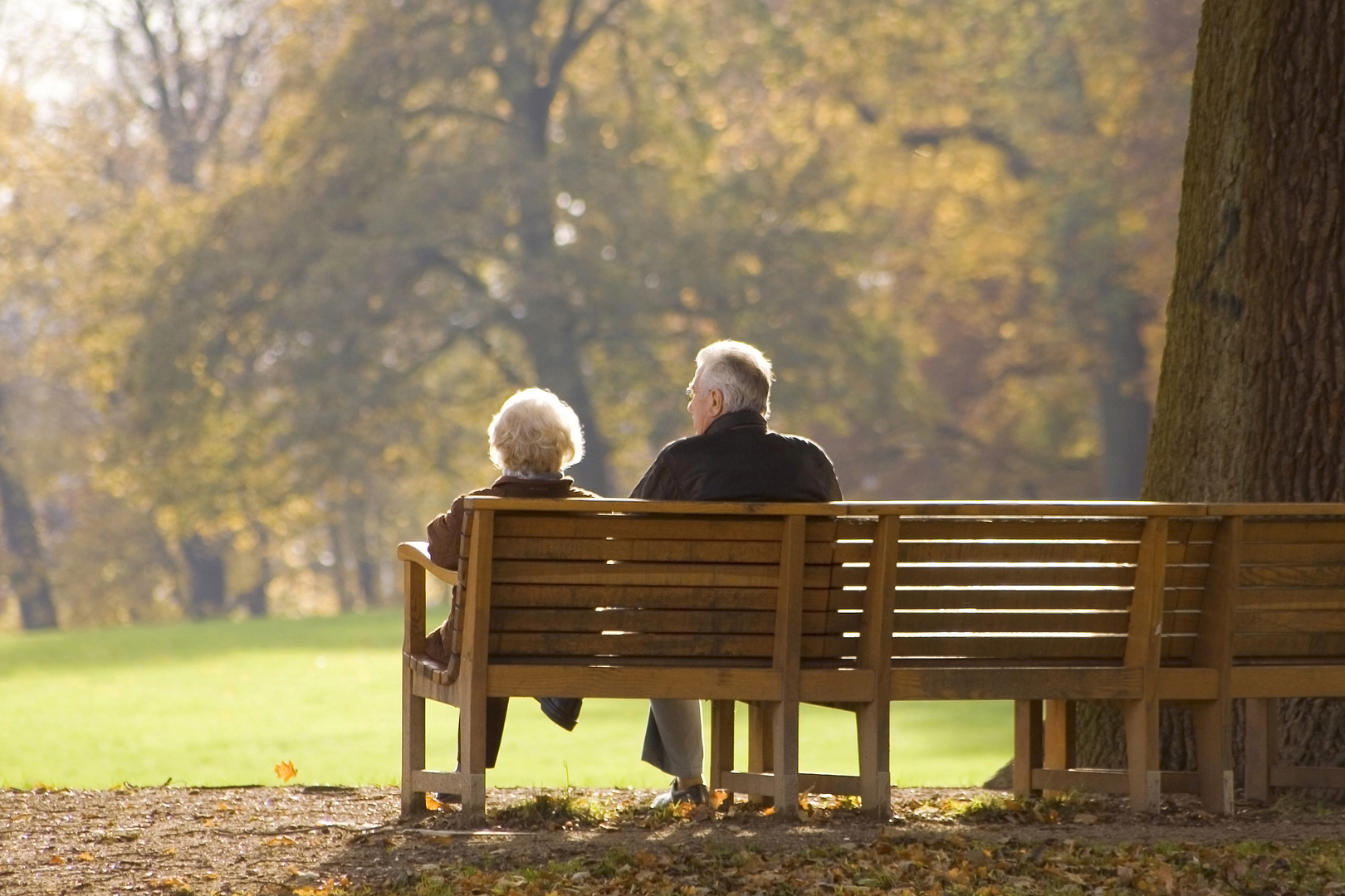Advocates for the Elderly, Inc.